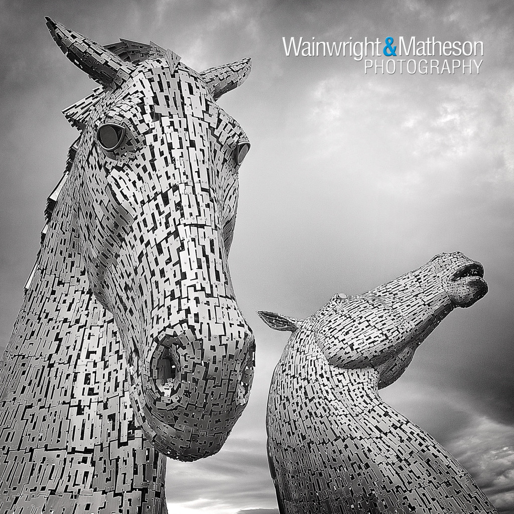 kelpies, sculpture, scotland, falkirk