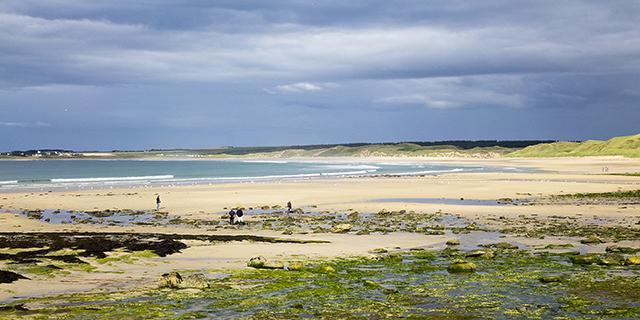 """""""Dunnet Bay Beach"""", Caithness, Scotland"""
